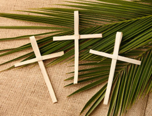Catholic Women Preach – Palm Sunday